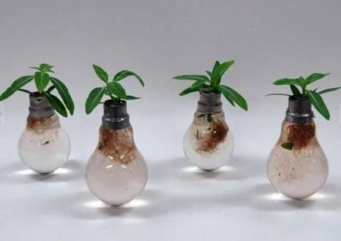 Креатив из старых лампочек (фото)